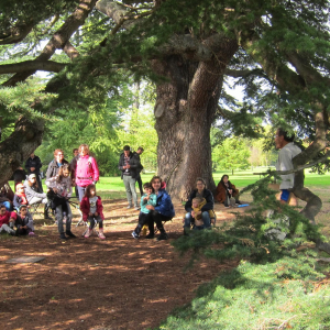 Visite guidée - Parc de Rentilly